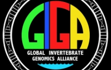 The GIGA logo